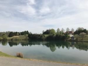 #8 Pond